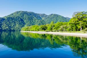 新緑の中禅寺湖 千手ヶ浜の写真素材 [FYI01430914]