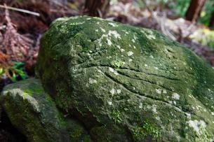 古代文字 ペトログラフの写真素材 [FYI01431235]