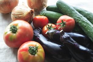 夏野菜の集合の写真素材 [FYI01431287]