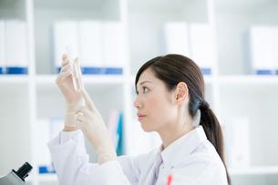 薬品の研究をする30代女性の写真素材 [FYI01431373]