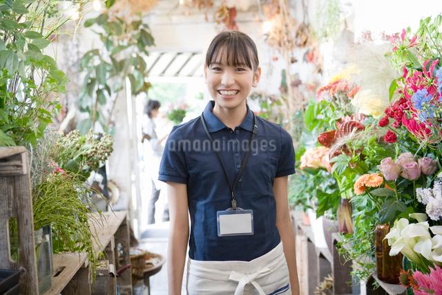 働く若い店員の写真素材 [FYI01432347]