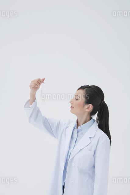試験管を見つめる白衣の女性の写真素材 [FYI01432399]