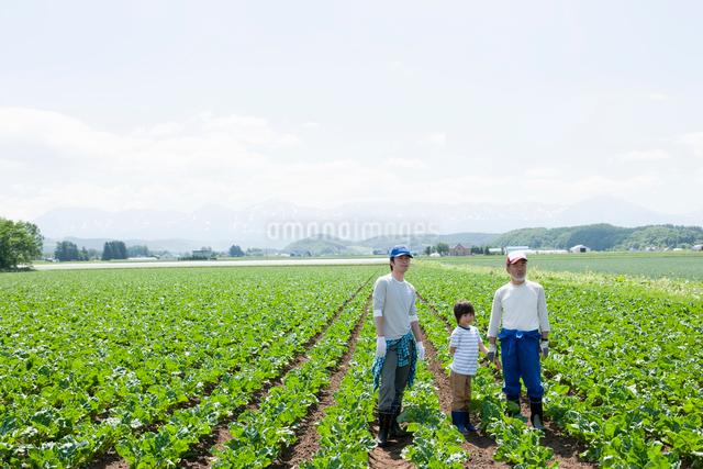 畑に立つ農家の三世代家族の写真素材 [FYI01433123]
