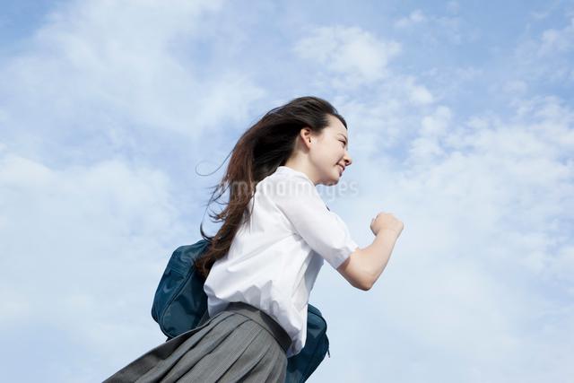 高校生の登下校風景の写真素材 [FYI01433901]