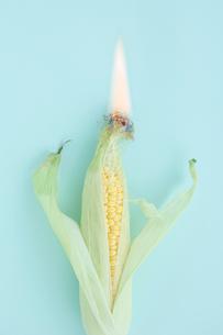 発火するトウモロコシの写真素材 [FYI01434039]