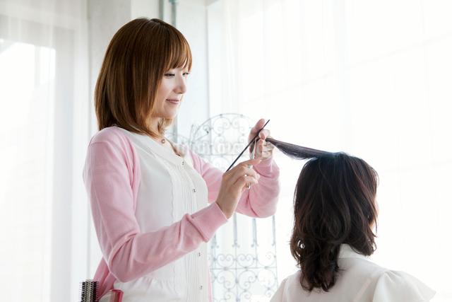 髪を切る美容師の写真素材 [FYI01434589]