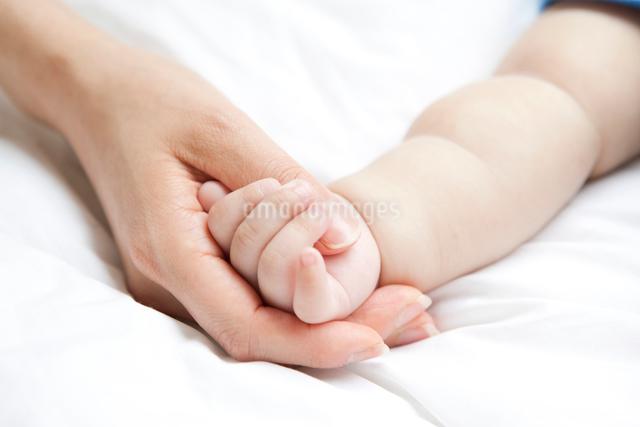 母と乳児の手の写真素材 [FYI01435749]