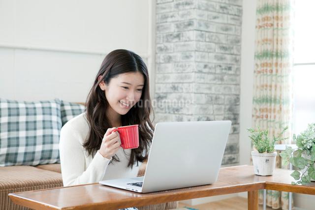 パソコンを使う20代女性の写真素材 [FYI01436207]