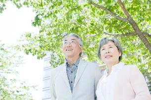笑顔のシニア夫婦の写真素材 [FYI01436763]
