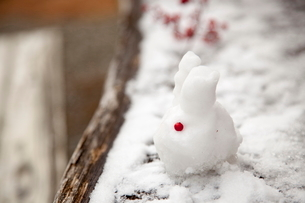 雪でつくったうさぎの写真素材 [FYI01437204]
