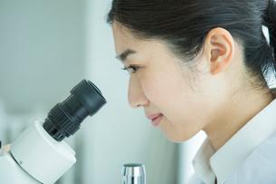 顕微鏡を覗く30代女性研究員の写真素材 [FYI01438080]