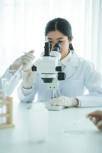 顕微鏡を覗く30代女性研究員の写真素材 [FYI01438278]