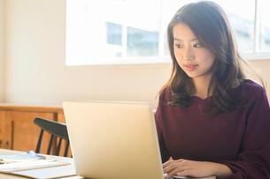 部屋でパソコンを操作する20代女性の写真素材 [FYI01438883]