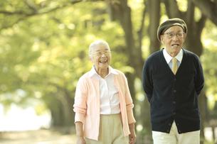 並木道を散歩するシニア夫婦の写真素材 [FYI01441576]