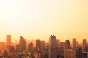 世界貿易センタービルから望む夕景の写真素材 [FYI01441592]