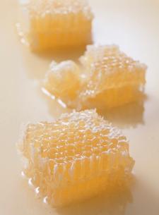蜂蜜の写真素材 [FYI01441598]
