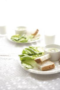 サラダとパンのプレートの写真素材 [FYI01441627]