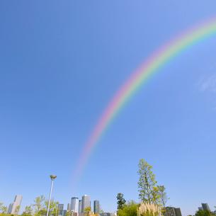 虹と豊洲六丁目公園と豊洲のビル群の写真素材 [FYI01441642]