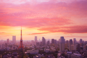 世界貿易センタービルから望む夕焼の写真素材 [FYI01441685]