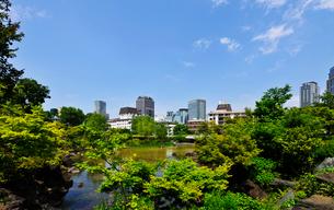 桧町公園の日本庭園と赤坂の高層ビル群の写真素材 [FYI01441717]