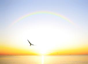 東京湾の日の出の写真素材 [FYI01441764]