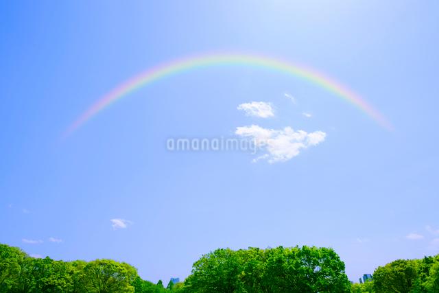 新緑の代々木公園と虹の写真素材 [FYI01441770]