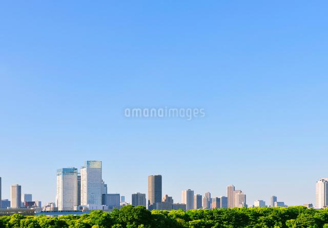 新緑と都心のビル群とゆりかもめの写真素材 [FYI01441776]
