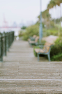 潮風公園のベンチとボードウォークの写真素材 [FYI01441968]