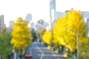 黄葉したイチョウ並木と赤い車の写真素材 [FYI01441982]