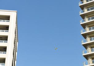 蝶と高層マンションの写真素材 [FYI01442140]