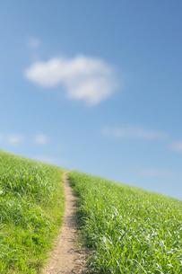 雲と草原の一本道の写真素材 [FYI01442208]