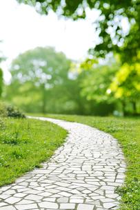 公園の石畳の散歩道の写真素材 [FYI01442213]