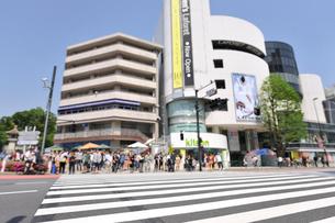 原宿の街並と横断歩道の写真素材 [FYI01442243]