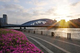 永代橋の日の出と隅田川の写真素材 [FYI01442334]