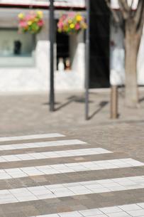 横断歩道と丸の内仲通りのショーウインドーの写真素材 [FYI01442354]
