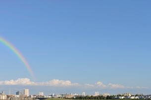 旧江戸川土手より浦安市の遠望の写真素材 [FYI01442381]