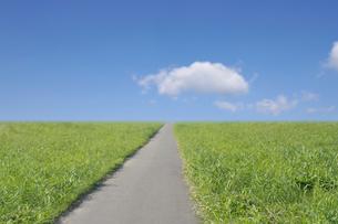 浮き雲と草原の一本道の写真素材 [FYI01442478]
