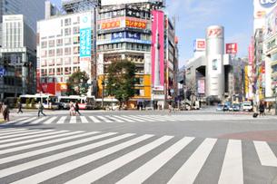 渋谷駅前の街並みとスクランブル交差点の写真素材 [FYI01442514]