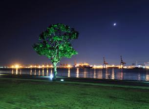 夜の潮風公園と大井埠頭の灯の写真素材 [FYI01442518]
