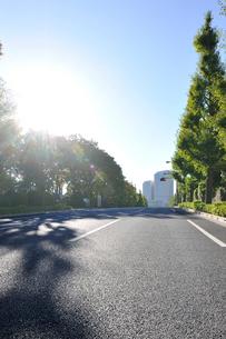 三宅坂に下る国会議事堂前の通りの写真素材 [FYI01442521]