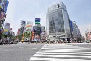 渋谷駅前スクランブル交差点の写真素材 [FYI01442527]