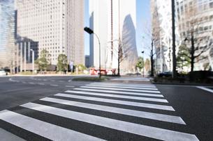 横断歩道と新宿副都心のビル群の写真素材 [FYI01442536]