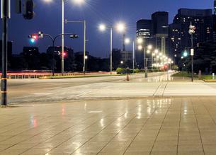 深夜の皇居外苑と内堀通りの写真素材 [FYI01442563]