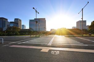 丸の内の高層ビル群と朝日に輝く横断歩道の写真素材 [FYI01442643]