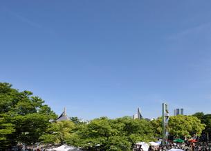 新緑と代々木のイベント広場の写真素材 [FYI01442647]