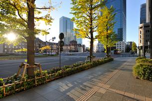 東京駅と朝日の当たる丸の内の高層ビル群の写真素材 [FYI01442655]