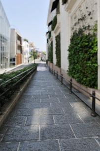 石畳の歩道の写真素材 [FYI01442668]