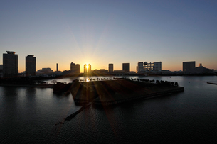 レインボーブリッジから見るお台場海浜公園の初日の出 の写真素材 [FYI01442682]