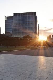 皇居外苑の日の出の写真素材 [FYI01442819]