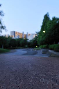 早朝の公園の散歩道の写真素材 [FYI01442823]